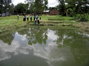 pond-at-local-school